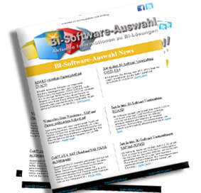 BI-Software-Newsletter